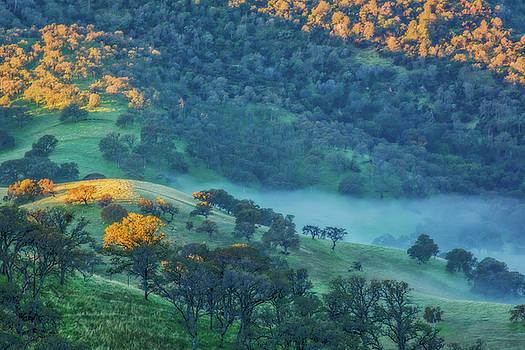 Marc Crumpler - Sunlit Hills and Fog