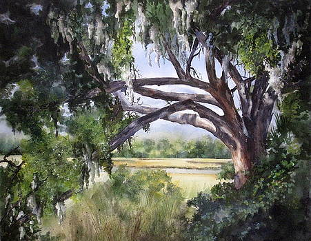Sunlit Marsh by Mary McCullah