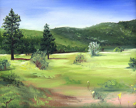 Sunlit Mountain Meadow by Nila Jane Autry