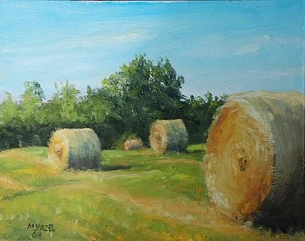 Sunner Harvest by Mike Yazel