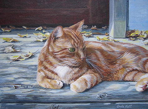 Sunning on the Porch by Anda Kett