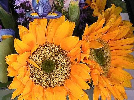 Sunny Flowers by Aldonia Bailey
