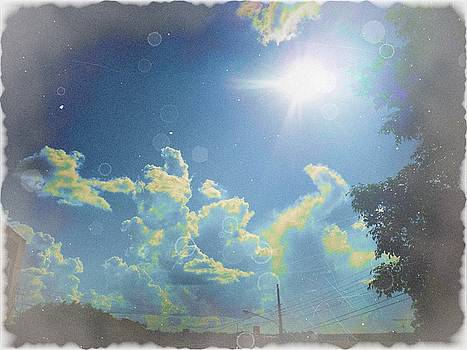 Sunny Fog by Beto Machado