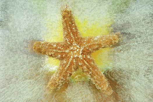 Linda Sannuti - Sunny Star
