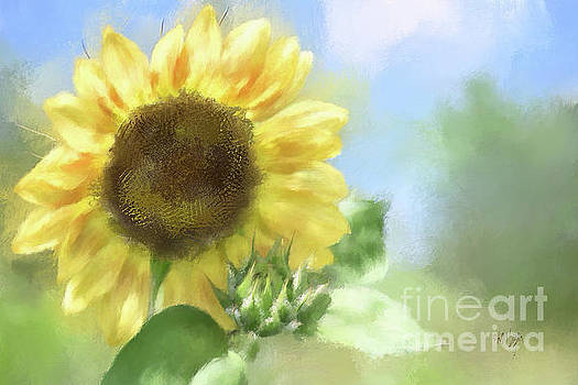 Sunny Sunflower by Lois Bryan