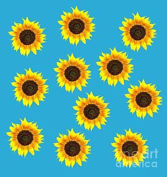 Judith  Flacke - Sunny sunflowers