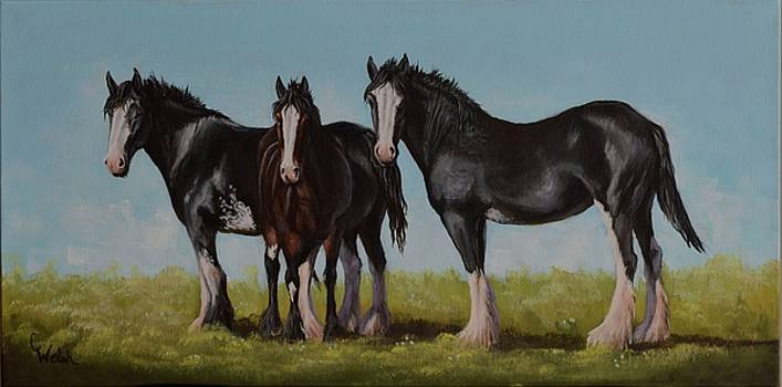 Sunny Trio by Cindy Welsh