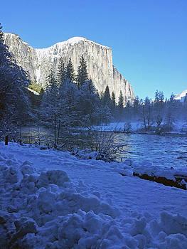 Sunny Winter Day 01 13 17 by Walter Fahmy
