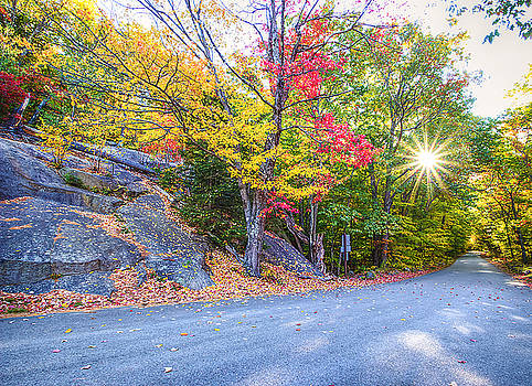 Sunray Road by David Pratt