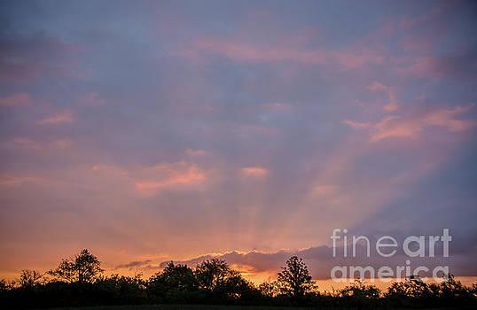 Sunrays Sunrise by Cheryl Baxter