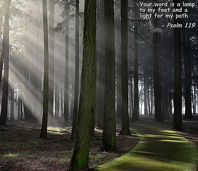 Sunrays Through the Fog #1 by Don Herd