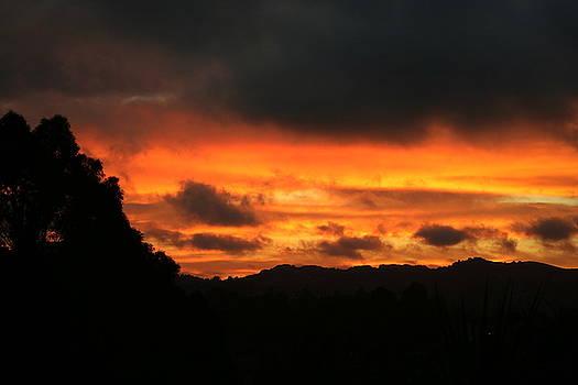 Sunrise 09 29 17 by Joyce Dickens
