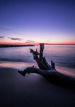 Sunrise by Amanda Wakefield
