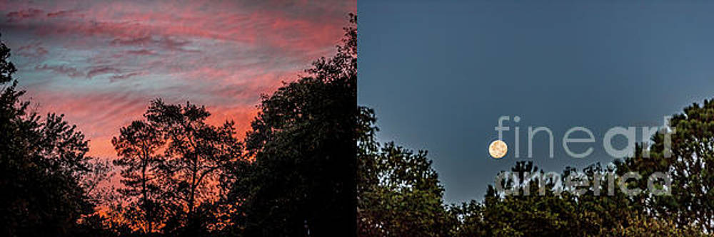 Sunrise and Moonset Duo Pan 8X24.tif  by Doug Berry