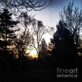 Sunrise and the Moon by Frank J Casella