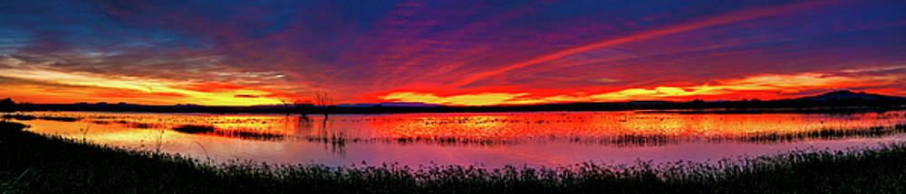 Sunrise at Bosque del Apache by Kristal Kraft