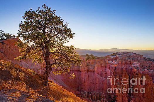 Sunrise at Bryce Canyon National Park Utah by Edward Fielding