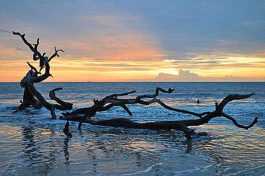 Sunrise at Driftwood Beach 1.4 by Bruce Gourley