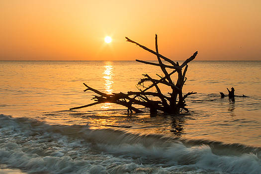Sunrise at Hunting Island by Lynne Jenkins