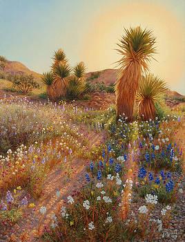 Sunrise at Joshua Tree by Johanna Girard