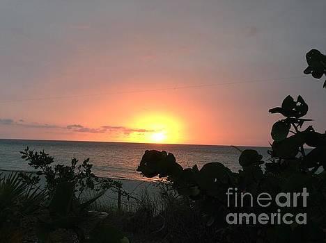 Sunrise at South Beach by Mitzisan Art LLC