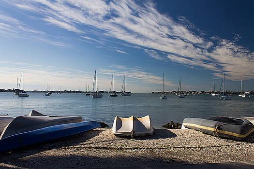 Sunrise at the Bay by Michael Tesar