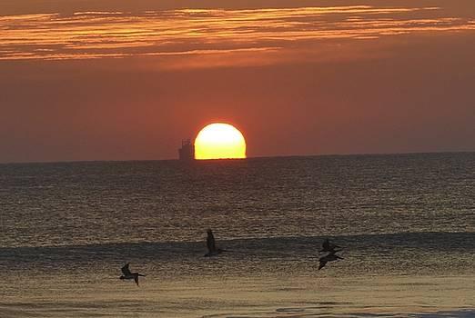 Cape Canaveral Sunrise by Lorelei Galardi