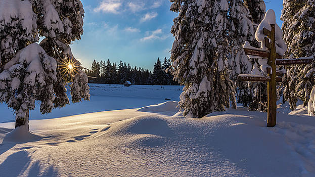 sunrise at the Oderteich, Harz by Andreas Levi