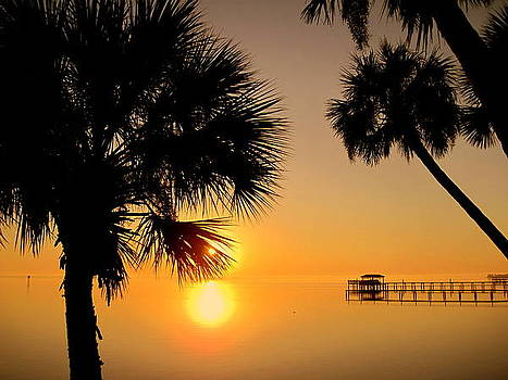 Susanne Van Hulst - Sunrise at the Space Coast FL