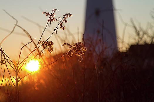 Sunrise Backlight by Darryl Hendricks
