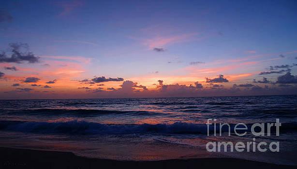 Ricardos Creations - Sunrise Beach Treasure Coast Florida 1A