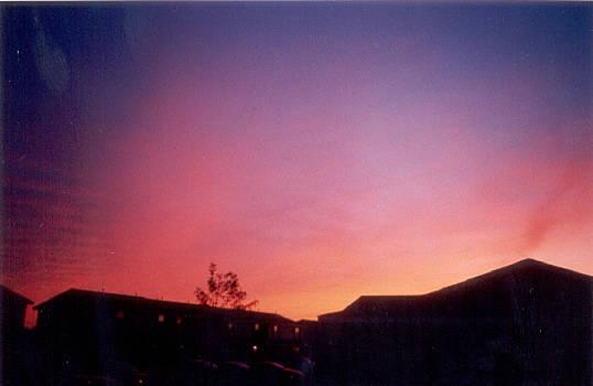 Sunrise blue by Virginia Flye