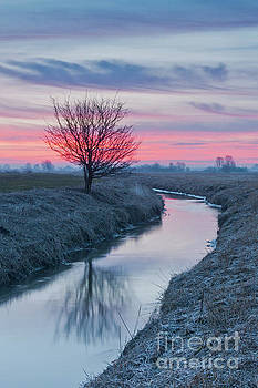 Sunrise by the Pisia river by Jaroslaw Suchozebrski