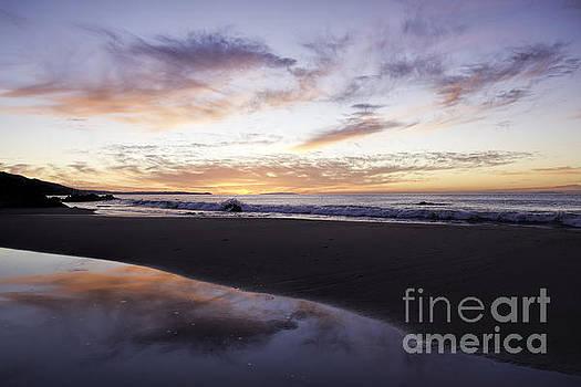 Sunrise Delight by Bill Baer
