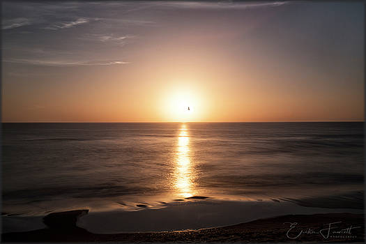 Erika Fawcett - Sunrise