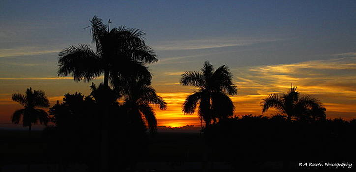 Barbara Bowen - Sunrise from Paul Rardin Park