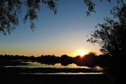 Sunrise by Grace Dillon