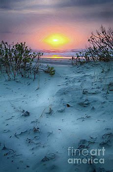 Dan Carmichael - Sunrise Hike on the Outer Banks AP