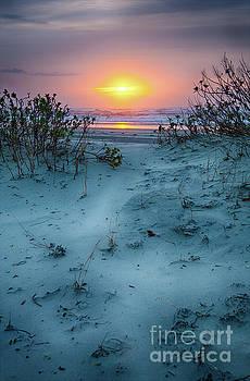 Dan Carmichael - Sunrise Hike on the Outer Banks