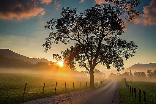 Sunrise in Cades Cove by Jackie Novak