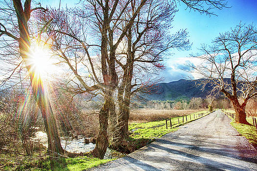 Sunrise in Cades Cove On Sparks Lane by Carol Mellema