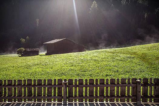 Sunrise in my garden by Cristian Mihaila