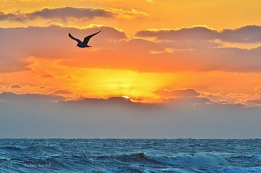 Sunrise in Nags Head by Barbara Ann Bell