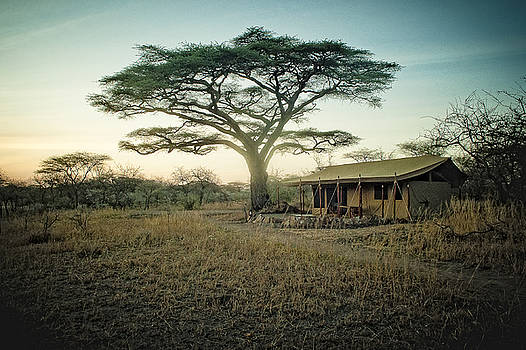 Sunrise in Tanzania by Justin Carrasquillo