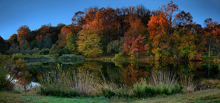 Sunrise In The Park - Holmdel Park by Angie Tirado