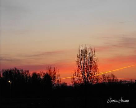 Sunrise by Lorraine Louwerse