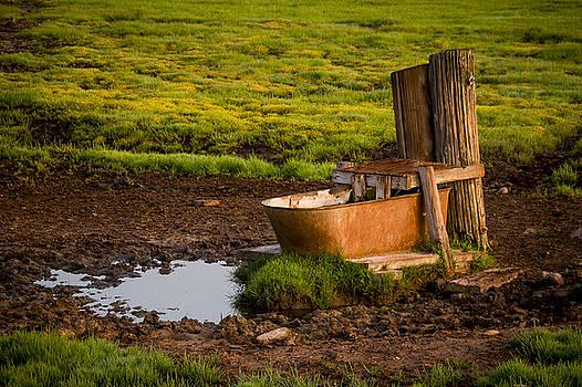 Bruce Bottomley - Sunrise Old Water Hole
