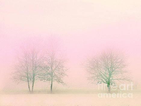 Sunrise On A Misty Morning by Clive Littin