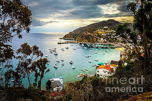 Sunrise on Catalina Island Avalon Bay California by Paul Velgos