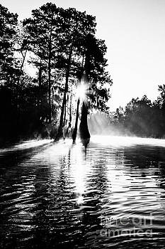 Scott Pellegrin - Sunrise on Grand Bayou